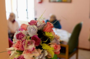 fiori.villadelsole